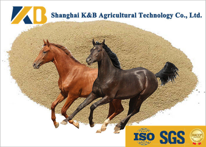 Professional Horse Feed Rice Protein Powder For Bright Fur And Strong Muscle